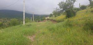 زمین متراژ بالا در کندلوس